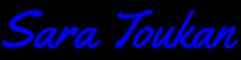 Sara Toukan | Agent Logo